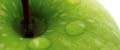emo mela